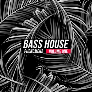 VARIOUS - Bass House Phenomena Vol 1