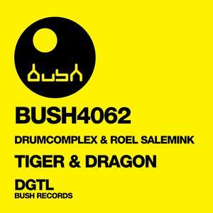 ROEL SALEMINK/DRUMCOMPLEX - Tiger & Dragon