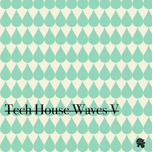 VARIOUS - Tech House Waves 5