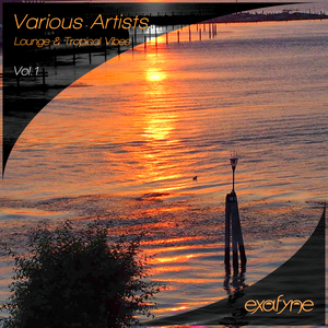 VARIOUS - Lounge & Tropical Vibes Vol 1