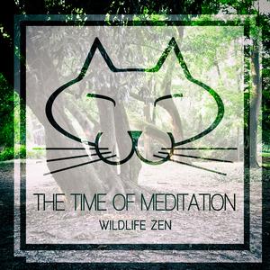 THE TIME OF MEDITATION - Wildlife Zen