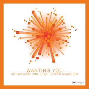 SCHWARZ & FUNK - Wanting You