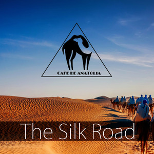 VARIOUS - The Silk Road