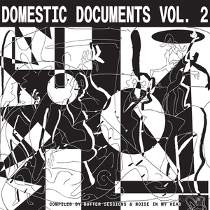 VARIOUS/BUTTER SESSIONS AND NOISE IN MY HEAD - Domestic Documents Vol 2/Compiled By Butter Sessions And Noise In My Head