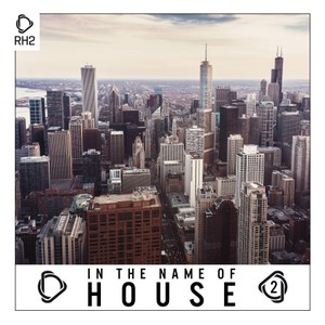 VARIOUS - In The Name Of House Vol 2