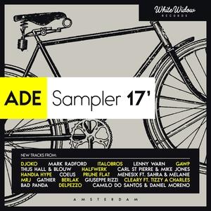 VARIOUS - ADE Sampler 17'