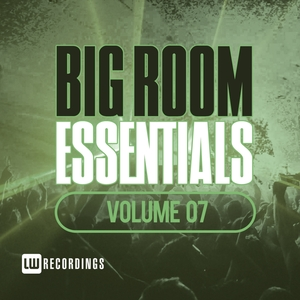 VARIOUS - Big Room Essentials Vol 07