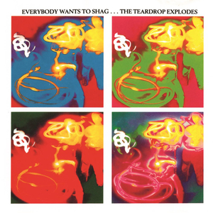THE TEARDROP EXPLODES - Everybody Wants To Shag... The Teardrop Explodes