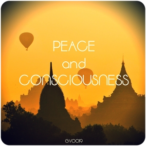VARIOUS - Peace And Consciousness