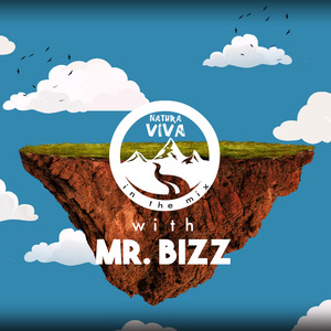 VARIOUS - Natura Viva In The Mix With Mr Bizz (unmixed tracks)