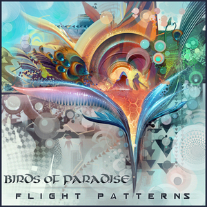 BIRDS OF PARADISE - Flight Patterns