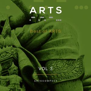 VARIOUS - Best Of Arts Vol 3