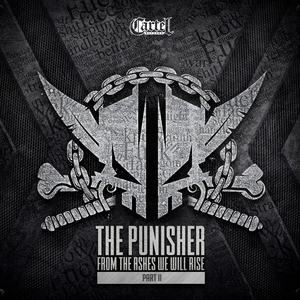 THE PUNISHER - From The Ashes We Will Rise Vol 2