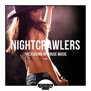 VARIOUS - Nightcrawlers - The Feeling Of House Music Vol 1
