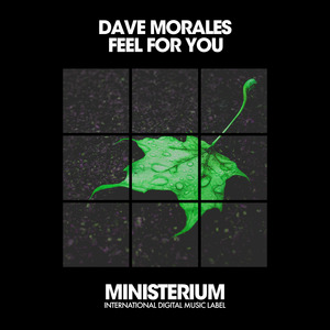 DAVE MORALES - Feel For You
