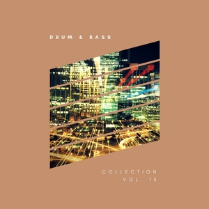VARIOUS - Sliver Recordings/Drum & Bass Collection Vol 13