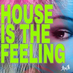 JASON RIVAS/INSTRUMENJACKIN/LAYLA MYSTIC/ALMOST BELIEVERS/OLD BRICK WAREHOUSE/CELLOS BALEARICA - House Is The Feeling