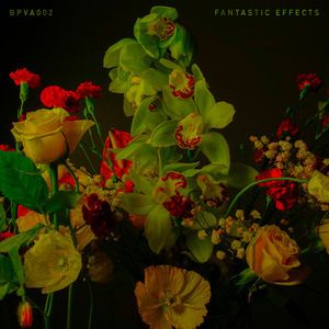 VARIOUS - Fantastic Effects