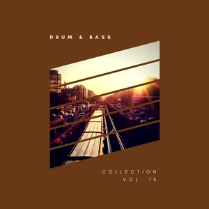 VARIOUS - Sliver Recordings: Drum & Bass Collection Vol 15