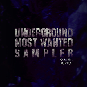 VARIOUS - Underground Most Wanted Sampler