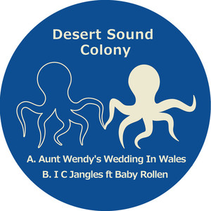 DESERT SOUND COLONY - Aunt Wendy's Wedding In Wales/I C Jangles