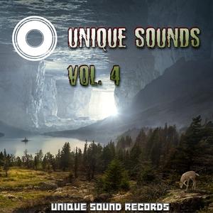 VARIOUS - Unique Sounds Vol 4