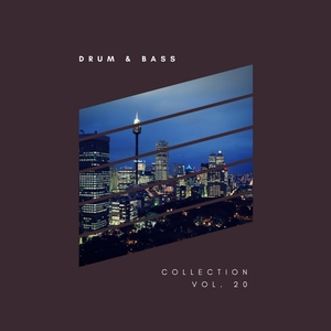 VARIOUS - Sliver Recordings/Drum & Bass Collection Vol 20