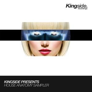 ROBBIE MIRELLO/HOUSE ANATOMY/WTDJ/FEZZ - Kingside Presents House Anatomy Sampler