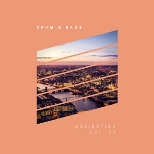VARIOUS - Sliver Recordings: Drum & Bass Collection Vol 23