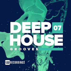 VARIOUS - Deep House Grooves Vol 07