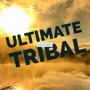 VARIOUS - Ultimate Tribal Collection 1
