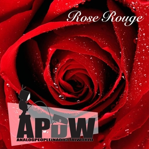 ANALOG PEOPLE IN A DIGITAL WORLD - Rose Rouge