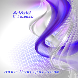 A-VOID feat INCASSO - More Than You Know