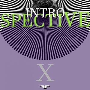 VARIOUS - Introspective X