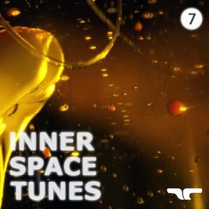 VARIOUS - Inner Space Tunes 7