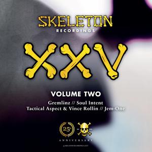 GREMLINZ/SOUL INTENT/TACTICAL ASPECT/VINCE ROLLIN/JEM-ONE - XXV Project Volume Two