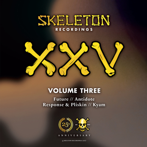 FUTURE/ANTIDOTE/RESPONSE/PLISKIN/KYAM - XXV Project Volume Three