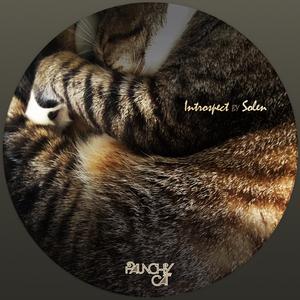 SOLEMN - Introspect EP