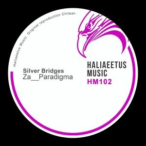 ZA__PARADIGMA - Silver Bridges