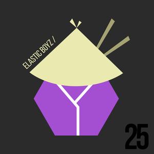 VARIOUS - Elastic Boyz 25