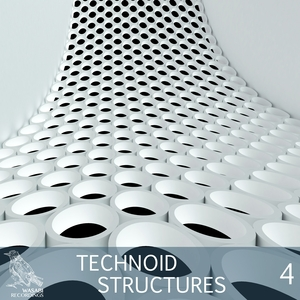 VARIOUS - Technoid Structures Vol 4