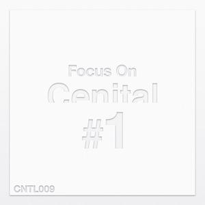 VARIOUS - Focus On Cenital Vol 1