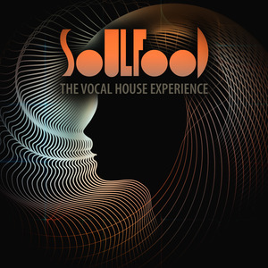 VARIOUS - Soulfood/The Vocal House Experience