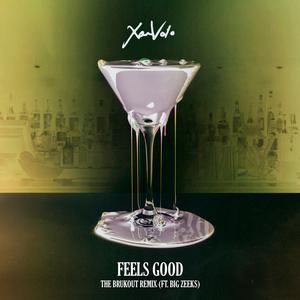 XAMVOLO feat BIG ZEEKS - Feels Good (The Brukout Remix)