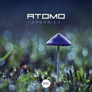 ATOMO - Organica