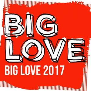 VARIOUS - Big Love 2017