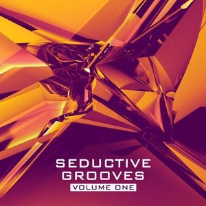 VARIOUS - Seductive Grooves Vol 1: Nu Disco House Sounds