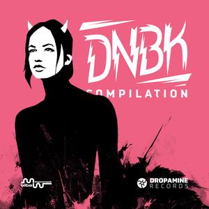 VARIOUS - DNBK Compilation 2017
