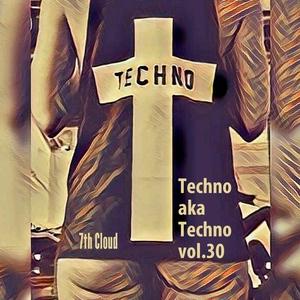 VARIOUS - Techno aka Techno Vol 30