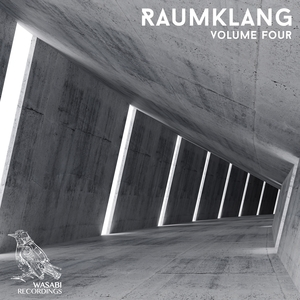 VARIOUS - Raumklang Vol 4